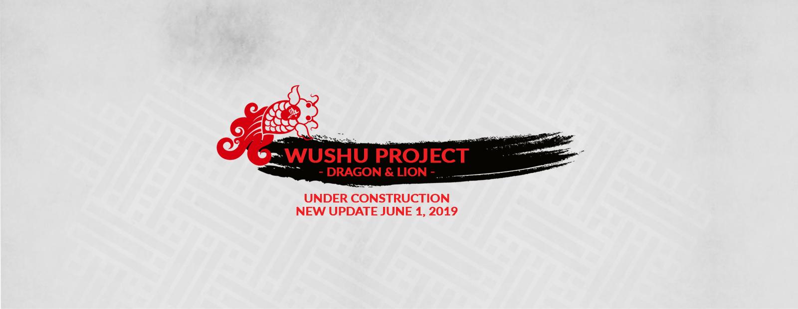 Performances – Wushu Project – Toronto – Dragon Lion Dance